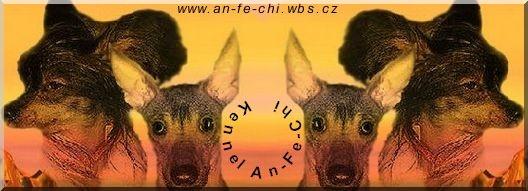 Chovatelská stanice čínských chocholatých psů a peruánských naháčů