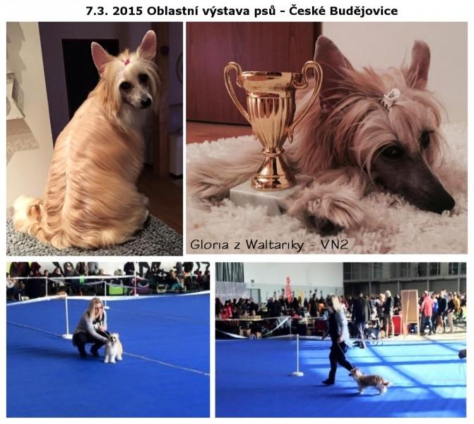 http://zwaltariky.websnadno.cz/new/gloria.jpg