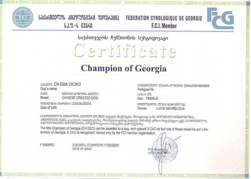 Šampion Gruzie