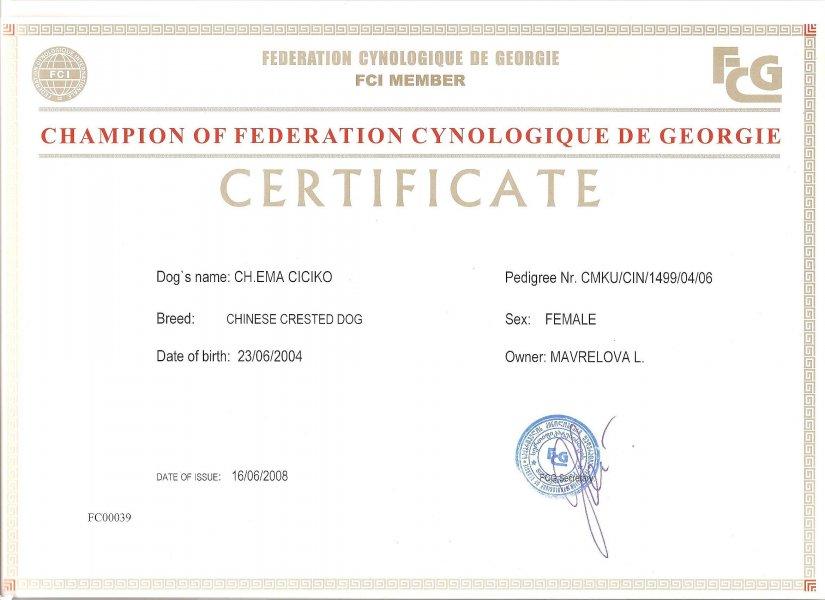 Šampion FCG