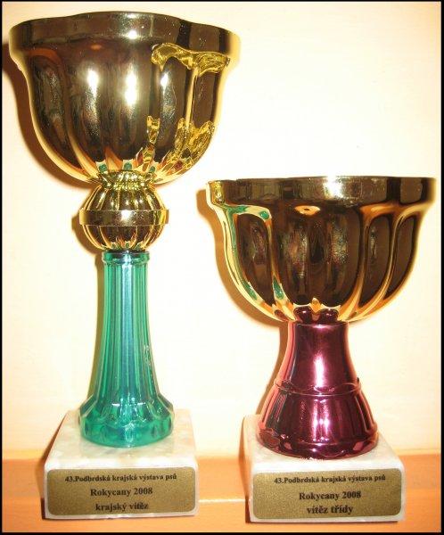 poháry z KV Rokycany