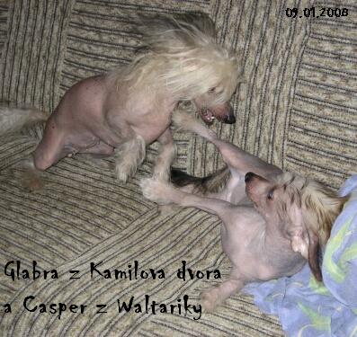 Casper z Waltariky s maminkou Glabrou z Kamilova dvora