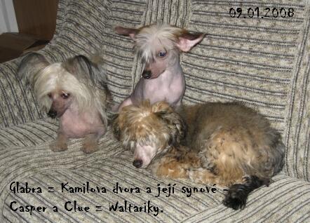 Clue, Casper z Waltariky s maminkou Glabrou z Kamilova dvora